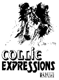 Collie Expressions